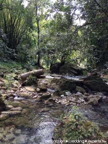reach-falls-jamaica-isolated
