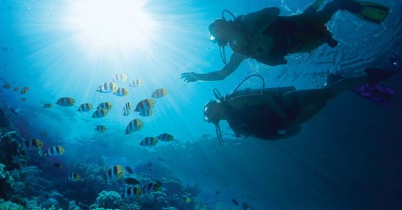 blog-diving at sandals-emerald-bay