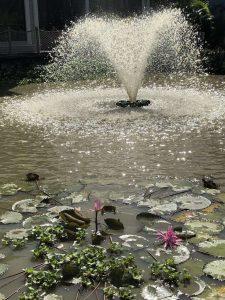 Grenada Sandals Fountain